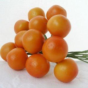 0020169 Naranča 48 kom
