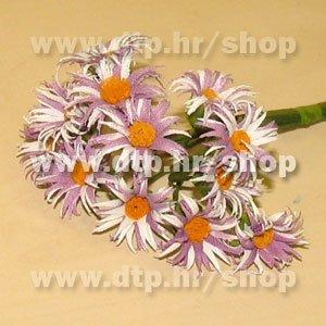 20134A29 margareta natur lila 36 kom