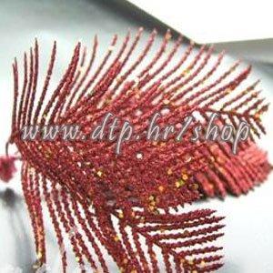 20837403 palmica crvena 1 kom