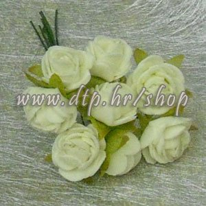 450286-1 Vrtna ruža šampanj